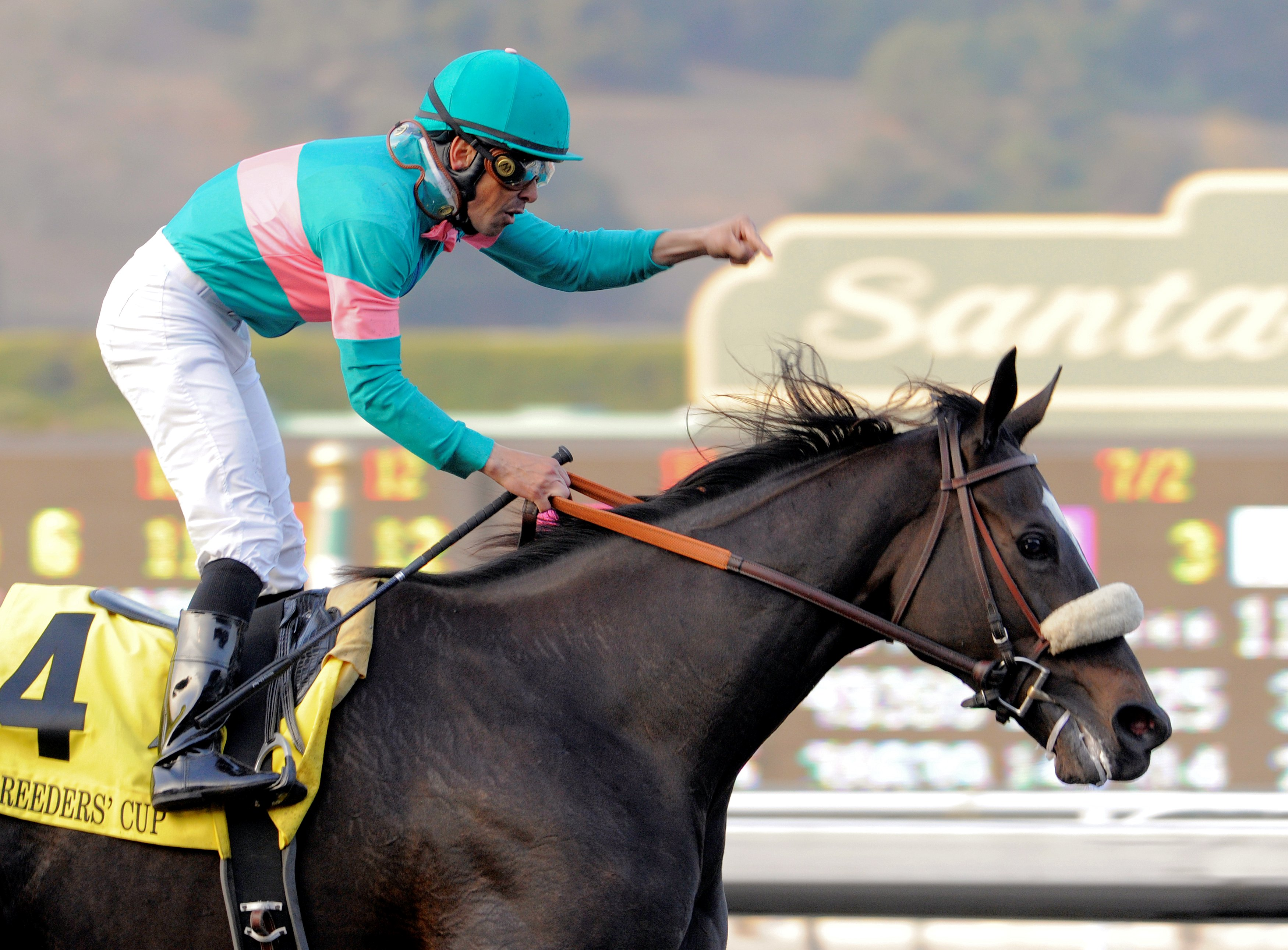 Mike Smith celebrating his Breeders' Cup Classic victory with Zenyatta (Skip Dickstein)