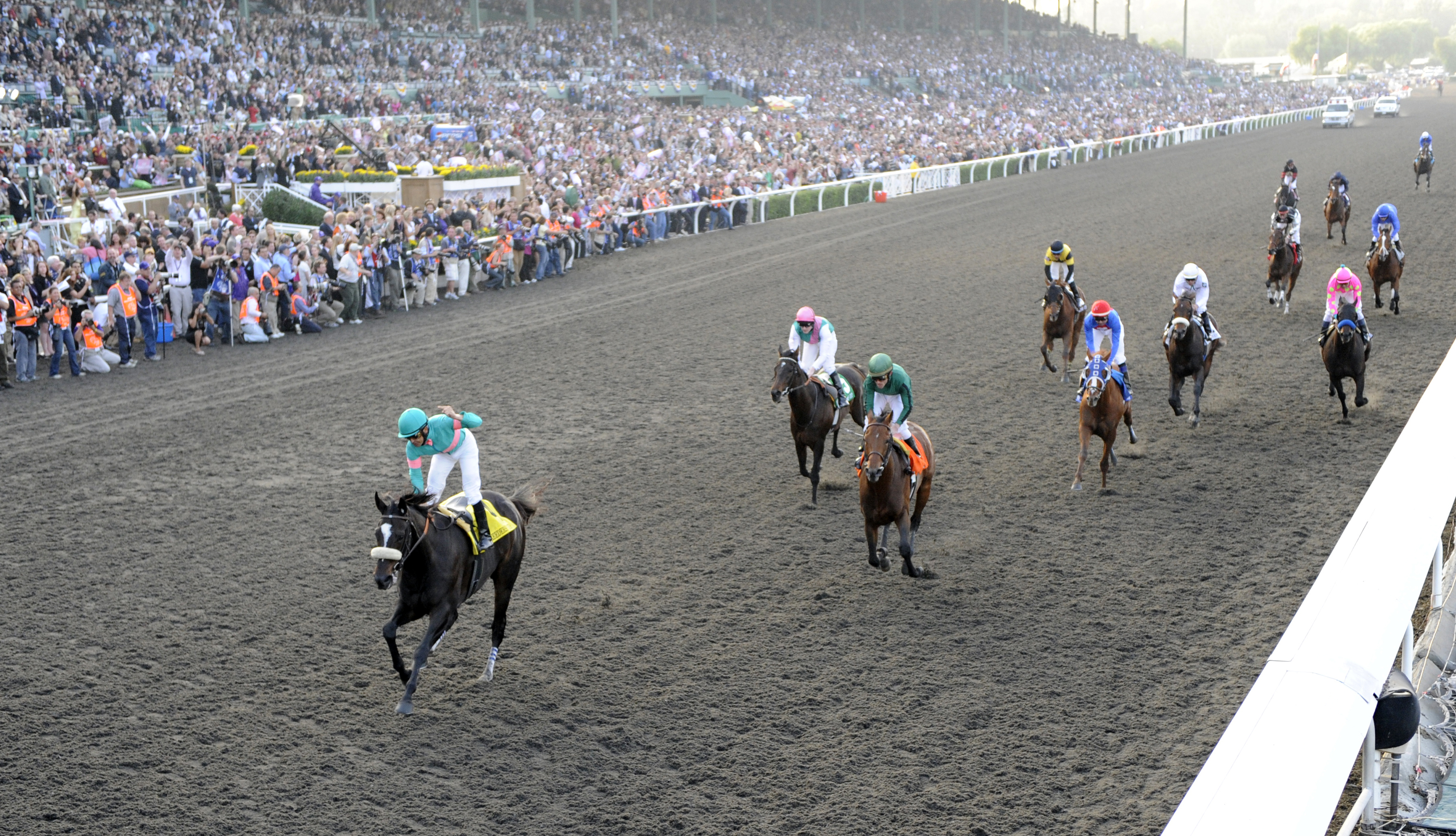 The view down the stretch following the finish of the 2009 Breeders' Cup Classic, won by Zenyatta with Mike Smith up (Skip Dickstein)