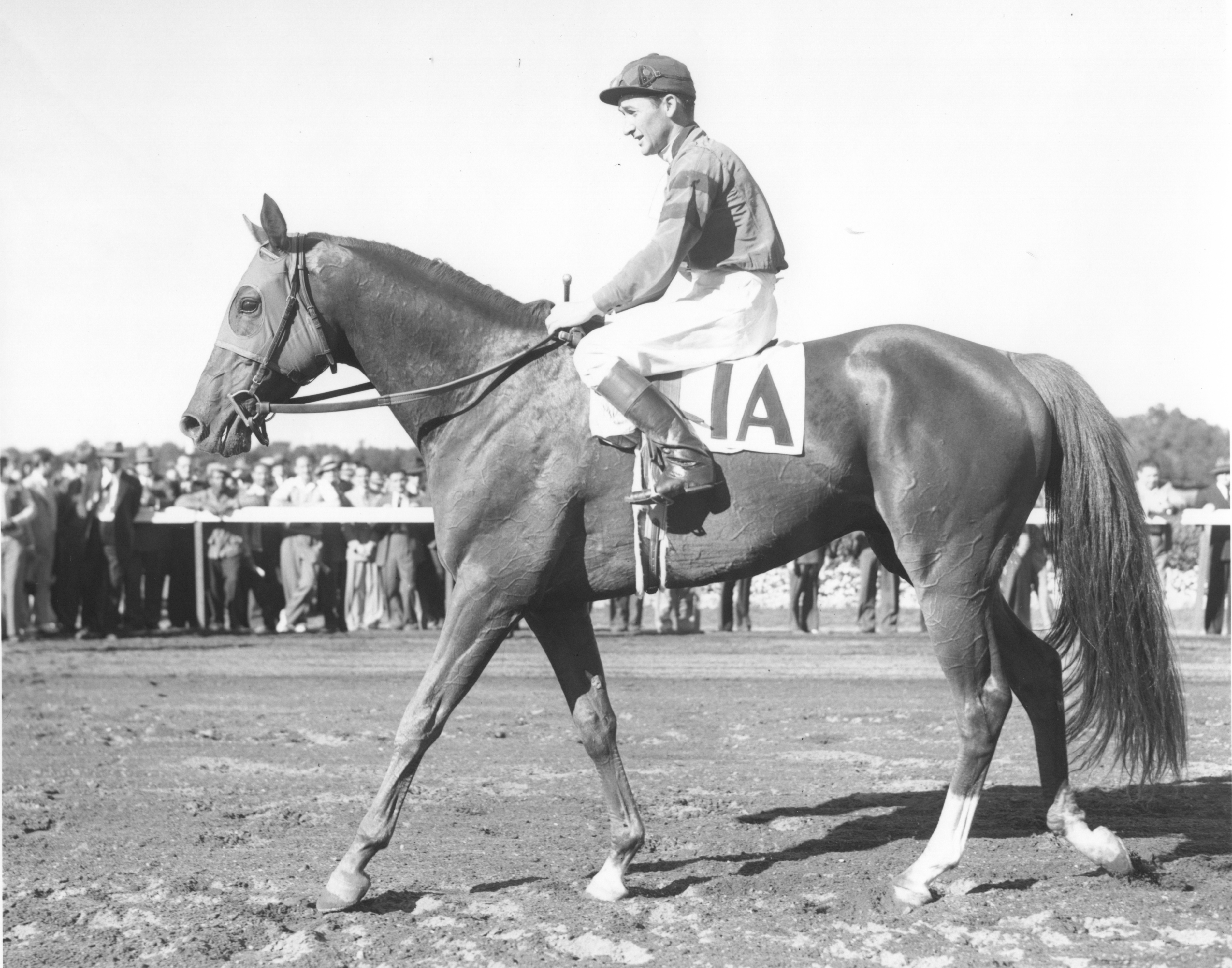 Alfred Robertson and Whirlaway in 1941 (Museum Collection)