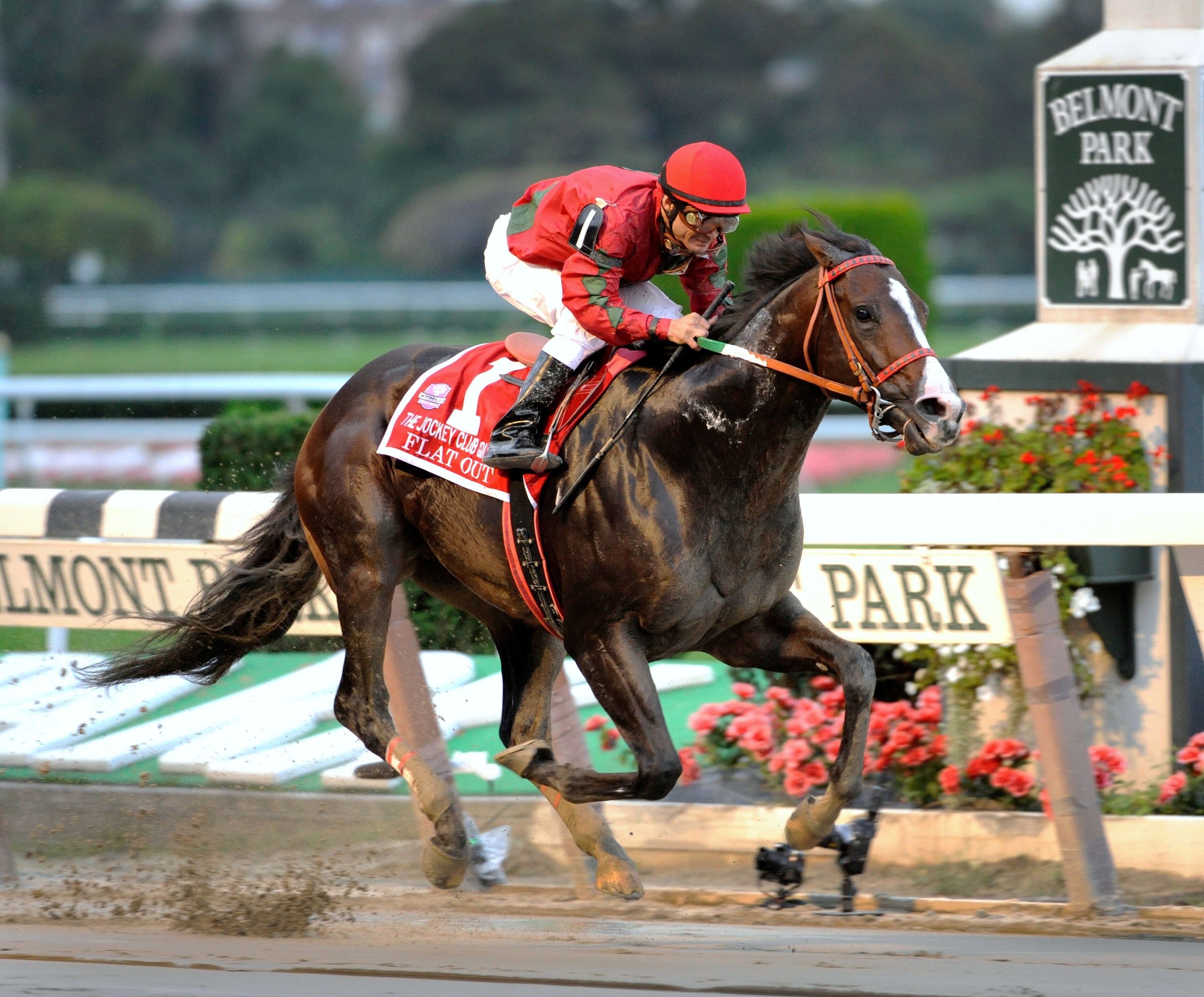 Alex Solis aboard Flat Out at Belmont (NYRA)