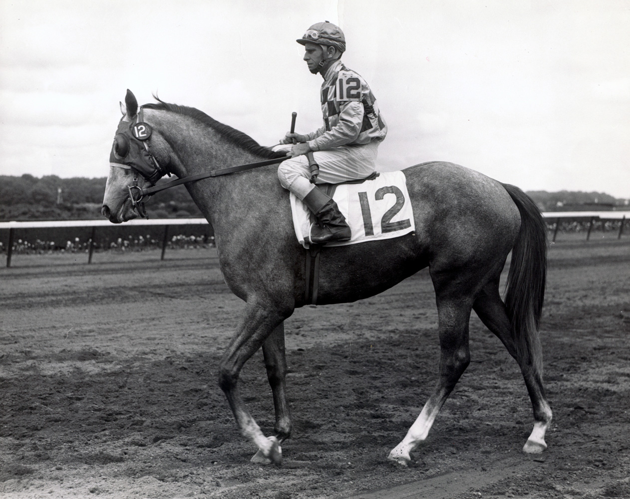 Bill Boland and Secret Recipe (Keeneland Library Morgan Collection/Museum Collection)