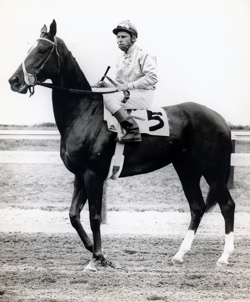 Bill Boland and Silver Spoon (Museum Collection)