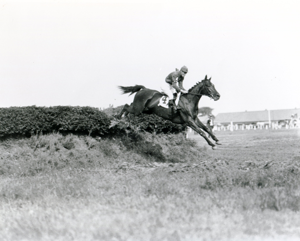 George Bostwick and Escapade clearing a jump in a steeplechase event at Aqueduct, September 1932 (Keeneland Library Cook Collection/Museum Collection)
