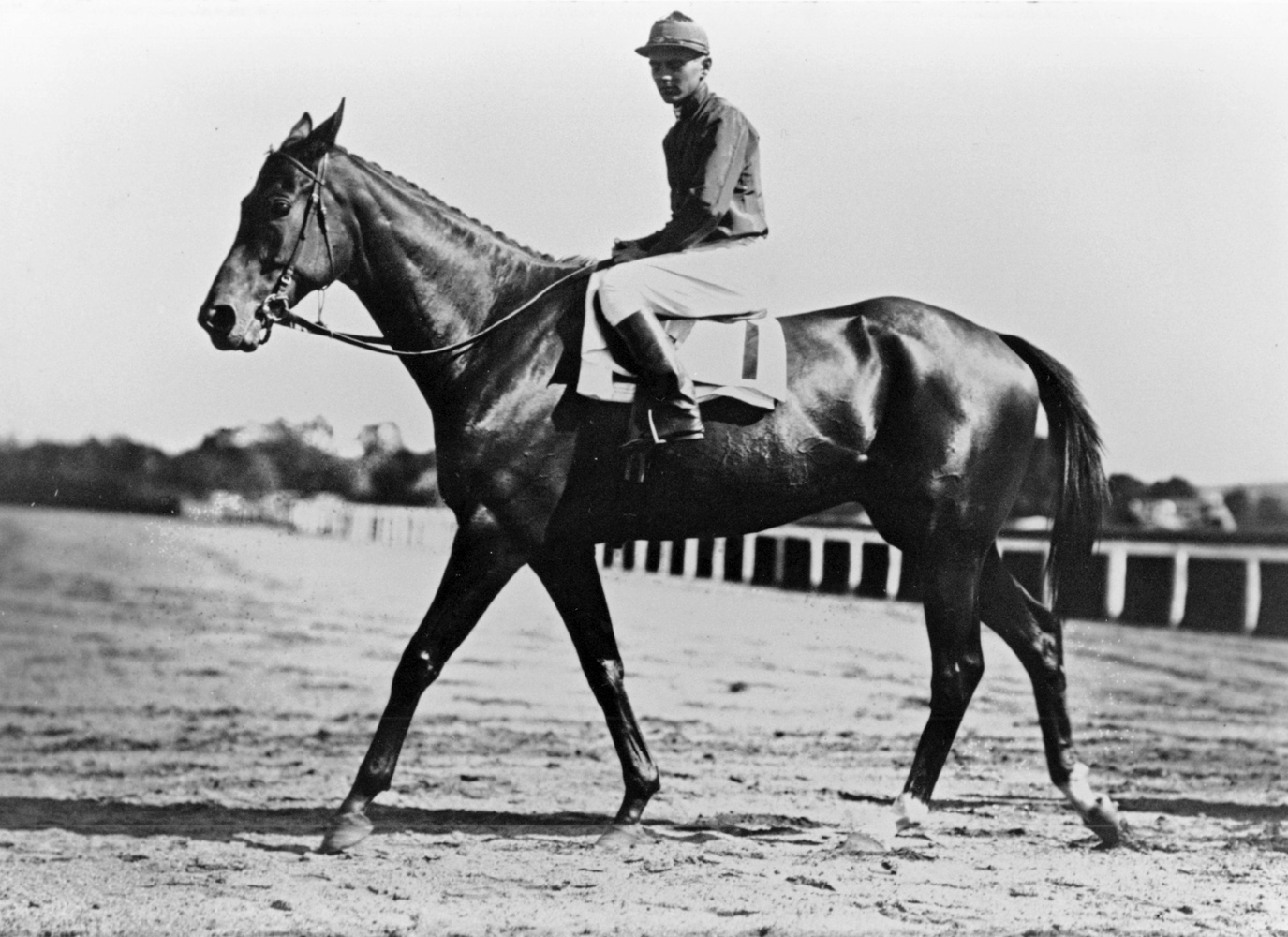George Bostwick and Chenango (Keeneland Library Cook Collection/Museum Collection)
