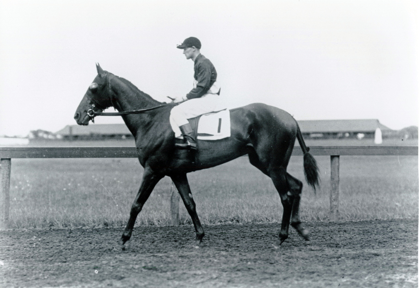 James Butwell and Roamer (Keeneland Library Cook Collection/Museum Collection)