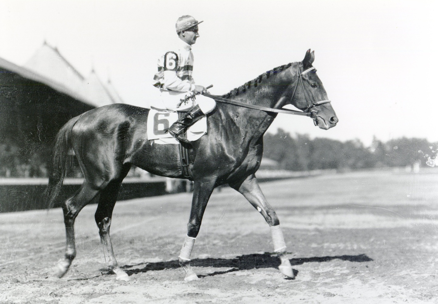 Laverne Fator and Burgoo King at Saratoga (Keeneland Library Cook Collection/Museum Collection)