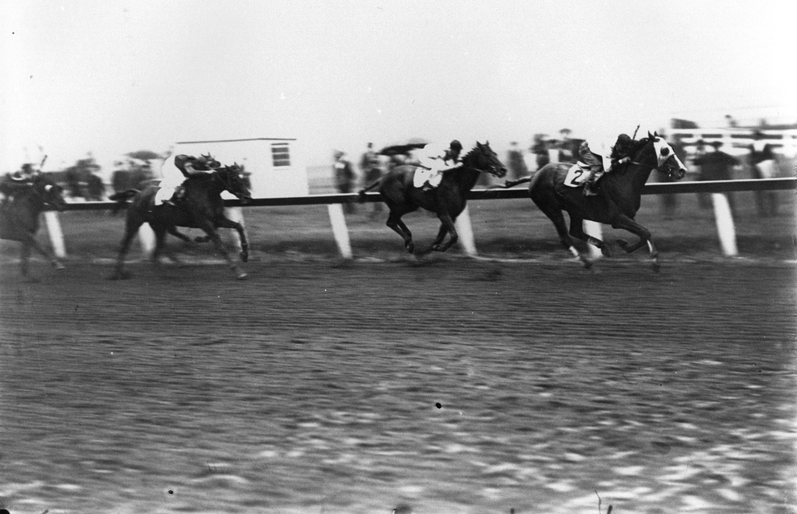 Laverne Fator and Grey Lag defeating Hall of Fame horses John P. Grier and Exterminator in the 1921 Brooklyn Handicap at Aqueduct (Keeneland Library Cook Collection/Museum Collection)