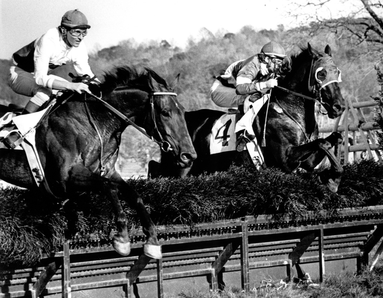 Jerry Fishback and Café Prince (left) taking a jump in the 1977 Samuel Martin Memorial Essex Hunt at Far Hills (Douglas Lees/Museum Collection)