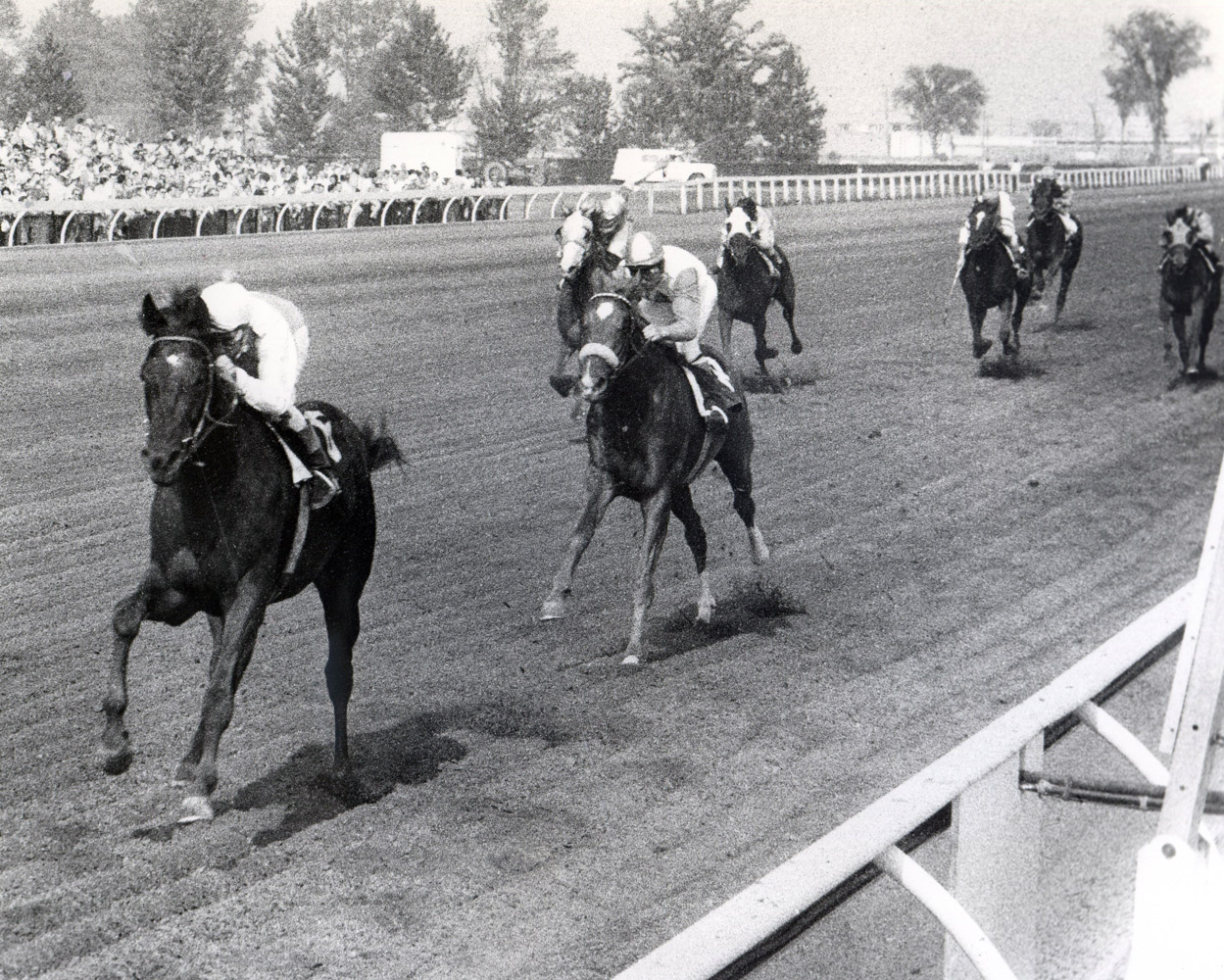 Avelino Gomez and Titled Hero winning the 1966 Queen's Plate (Michael Burns/Museum Collection)