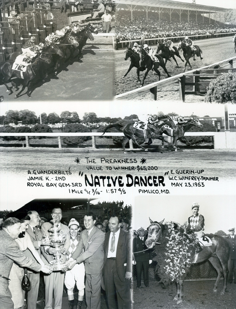 Win composite photograph for the 1953 Preakness Stakes at Pimlico, won by Native Dancer with Eric Guerin up (Museum Collection)