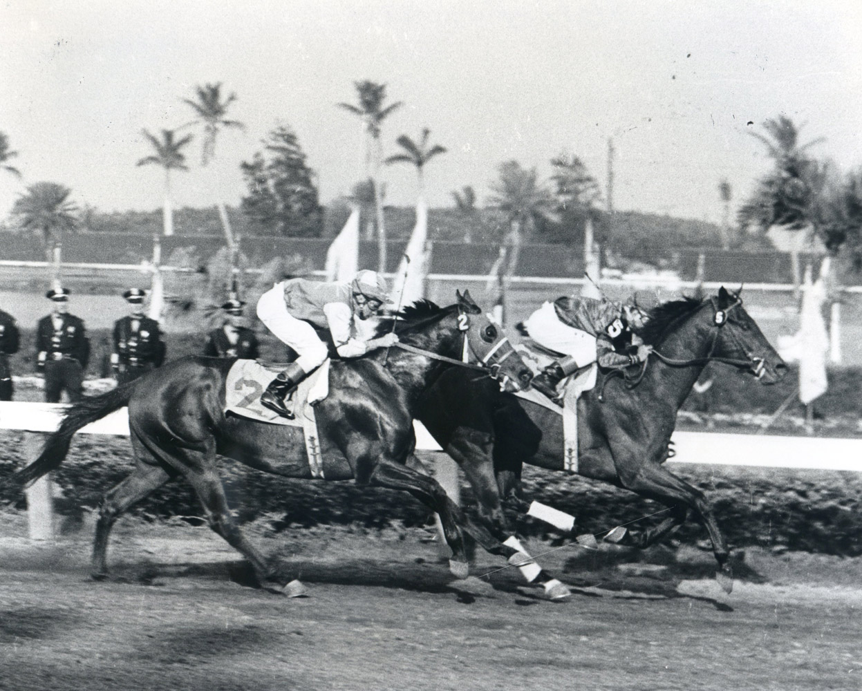 Bill Hartack and Tim Tam winning the 1958 Florida Derby at Gulfstream Park (Jim Raftery Turfotos/Museum Collection)