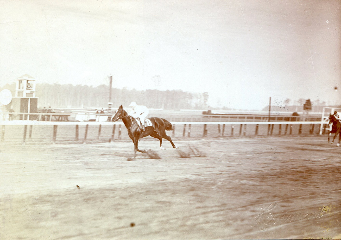 Walter Miller and Colin winning the 1907 National Stallion Stakes at Belmont Park (J. C. Hemment/Museum Collection)