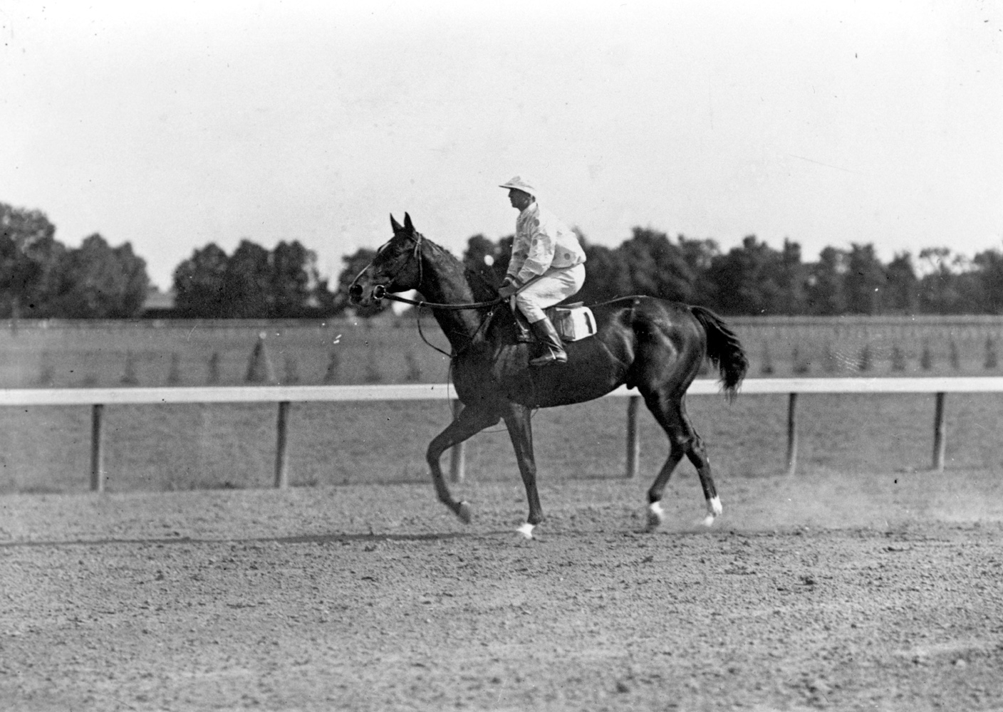 Walter Miller and Colin (Keeneland Library Cook Collection/Museum Collection)