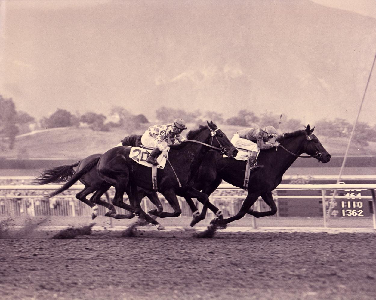 Ralph Neves and Cornhusker winning the 1957 Santa Anita Handicap (Santa Anita Photo/Museum Collection)