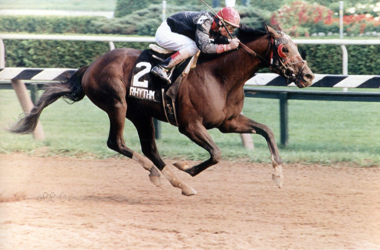 Craig Perret and Rhythm winning the 1990 Travers Stakes at Saratoga (Mike Pender/Museum Collection)