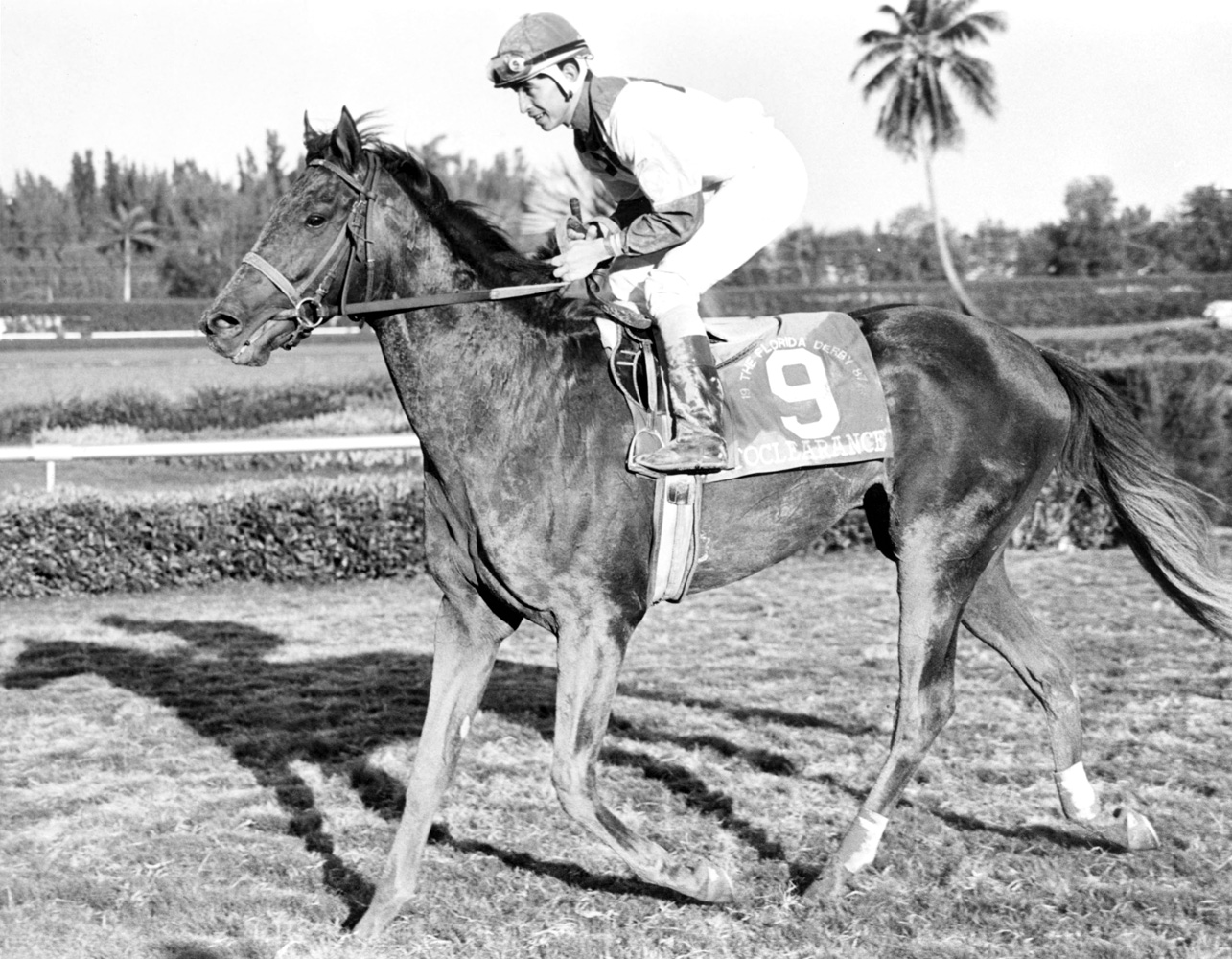 Jose Santos and Cryptoclearance after winning the 1987 Florida Derby at Gulfstream Park (Jim Raftery Turfotos)