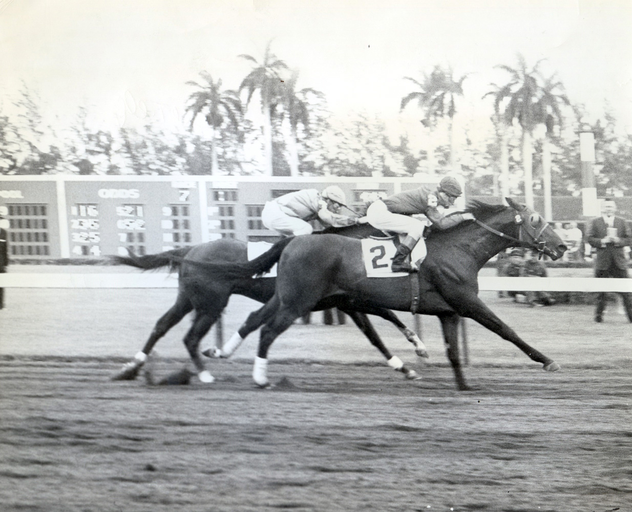 John Sellers and Yorky win the 1961 Widener Handicap at Hialeah Park (Leo Frutkoff/Museum Collection)