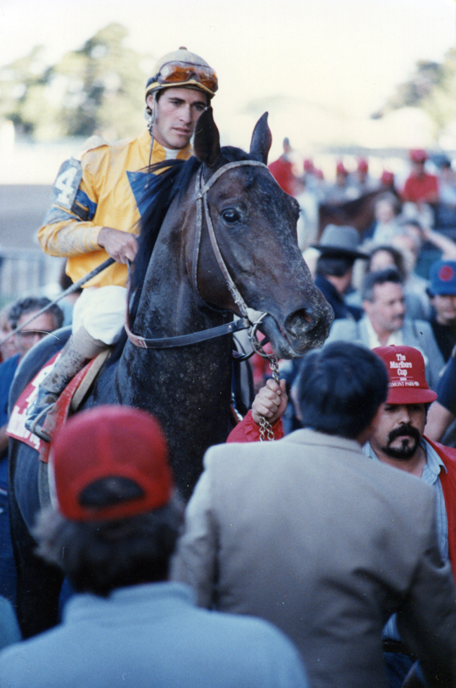 Gary Stevens and Turkoman after winning the 1986 Marlboro Cup at Belmont Park (Mike Pender/Museum Collection)