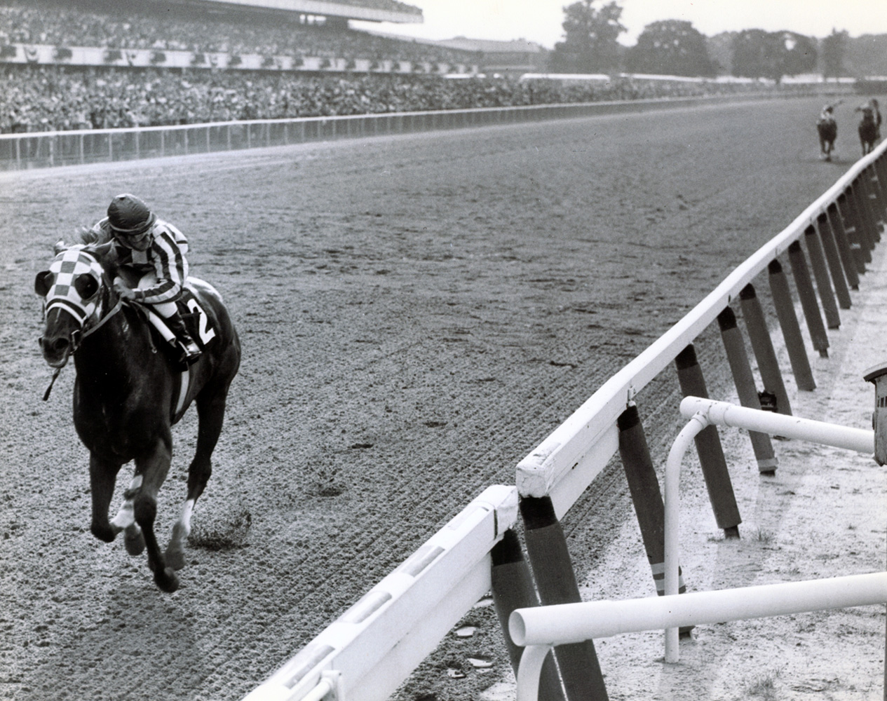 Ron Turcotte and Secretariat winning the 1973 Belmont Stakes and Triple Crown by a record-breaking 31 lengths (Bob Coglianese/Museum Collection)