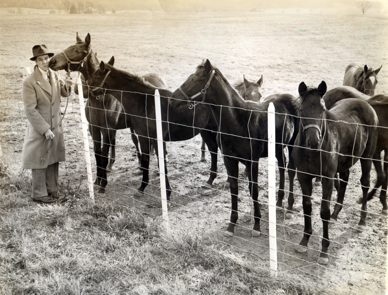 Alfred G. Vanderbilt II visiting horses on the farm (Museum Collection)