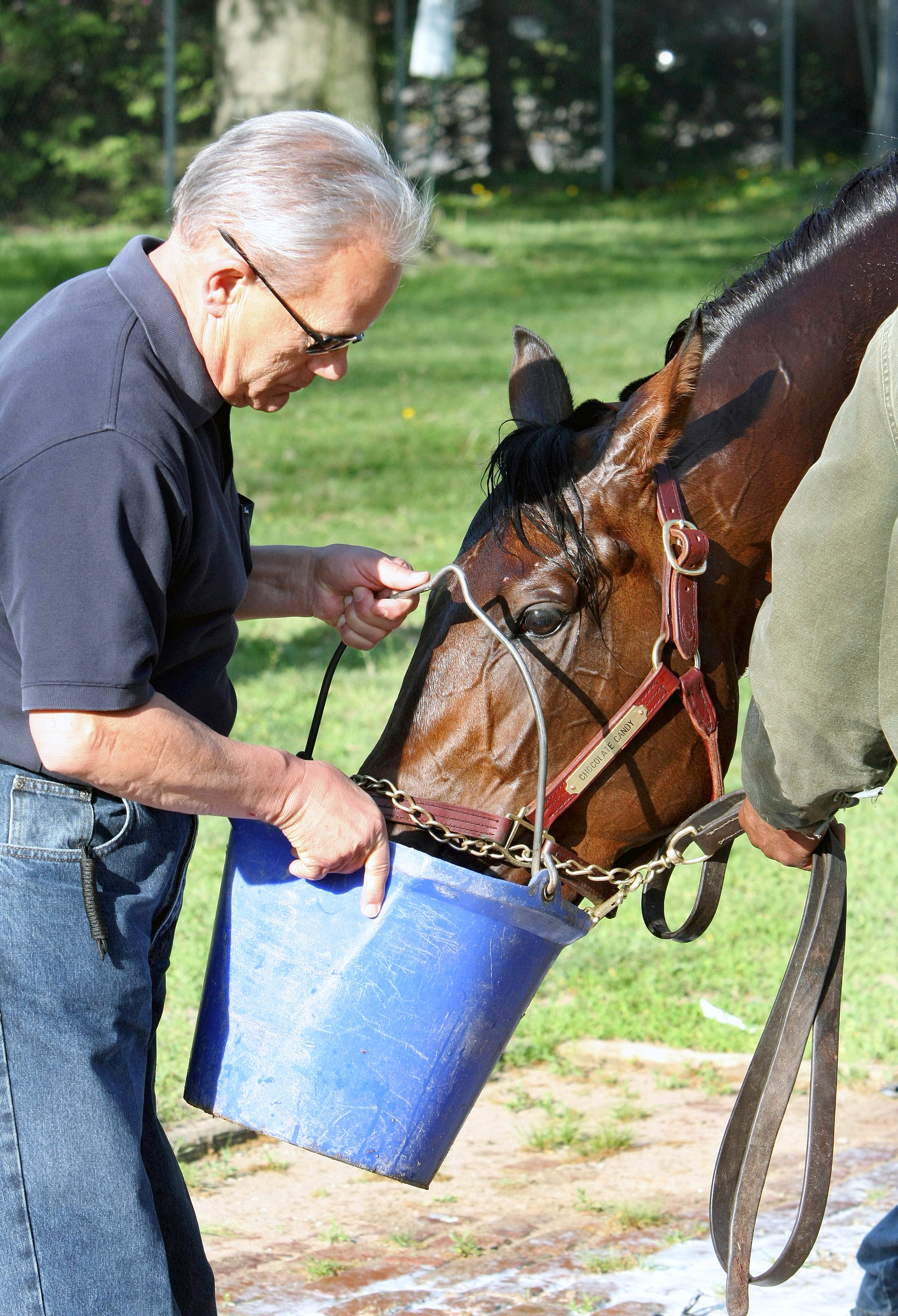 Jerry Hollendorfer and Chocolate Candy (Associated Press Photo)
