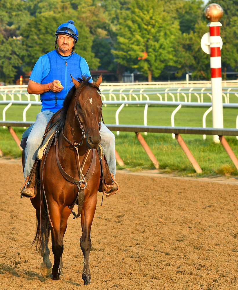 Steve Asmussen on the track during morning workouts at Saratoga, August 2018 (Brien Bouyea)