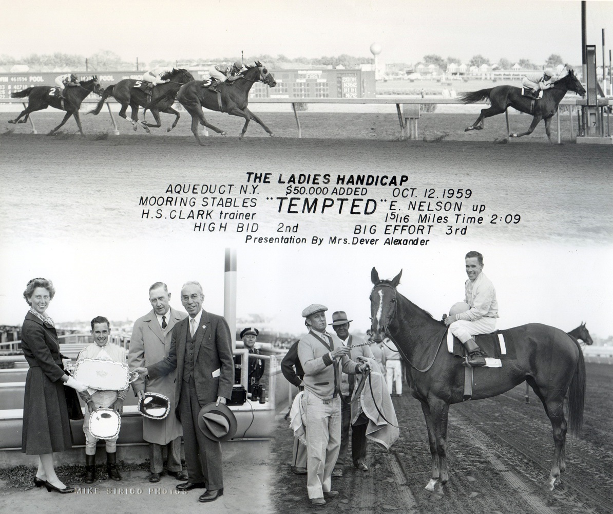 Win composite photograph for the 1959 Ladies Handicap at Aqueduct, won by Tempted (E. Nelson up), trained by  Henry S. Clark (Mike Sirico/Museum Collection)