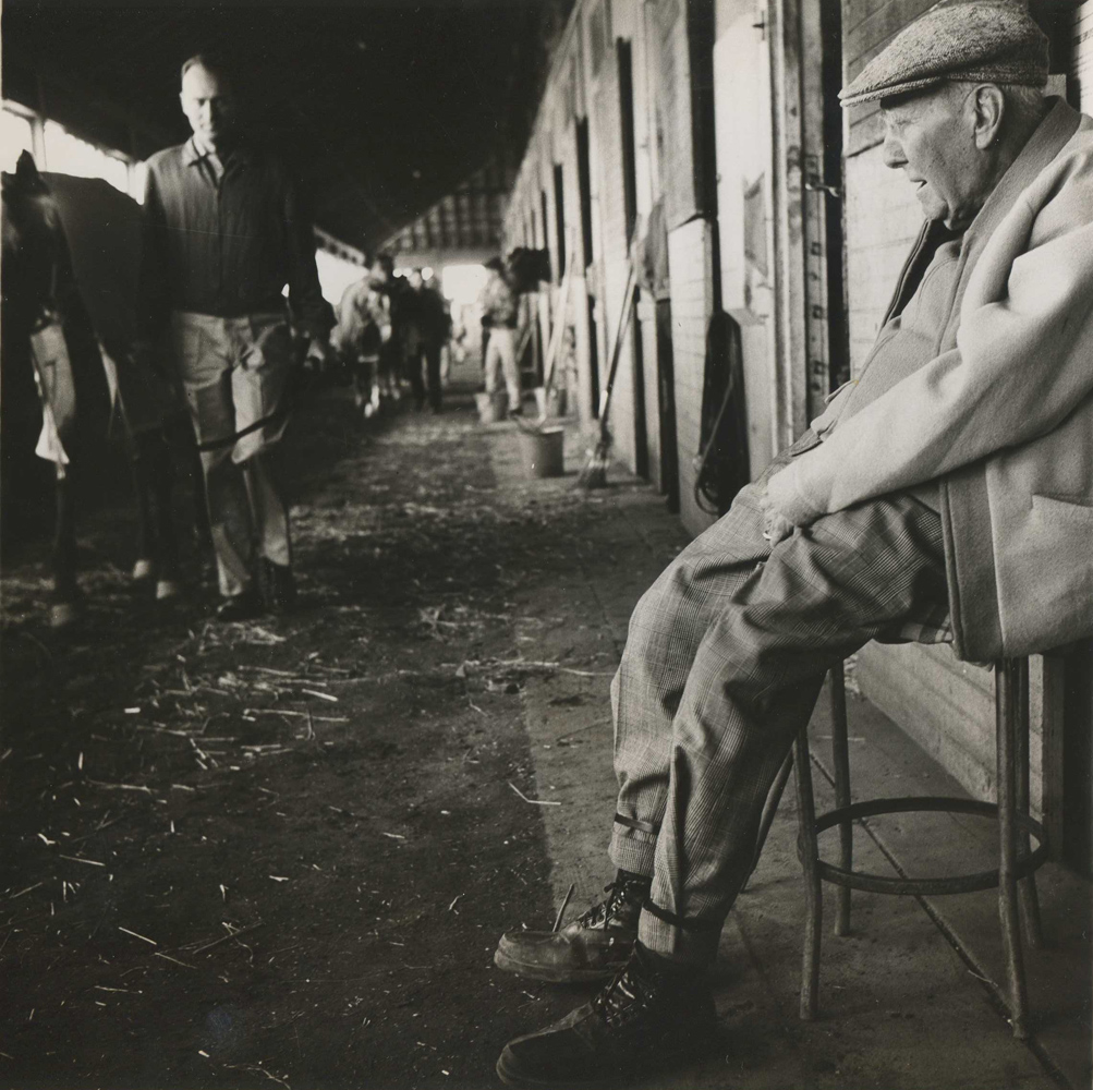 """James """"Sunny Jim"""" Fitzsimmons tending to his Wheatley Stable charges at Aqueduct, 1963 (NYRA/Paul Schafer /Museum Collection)"""