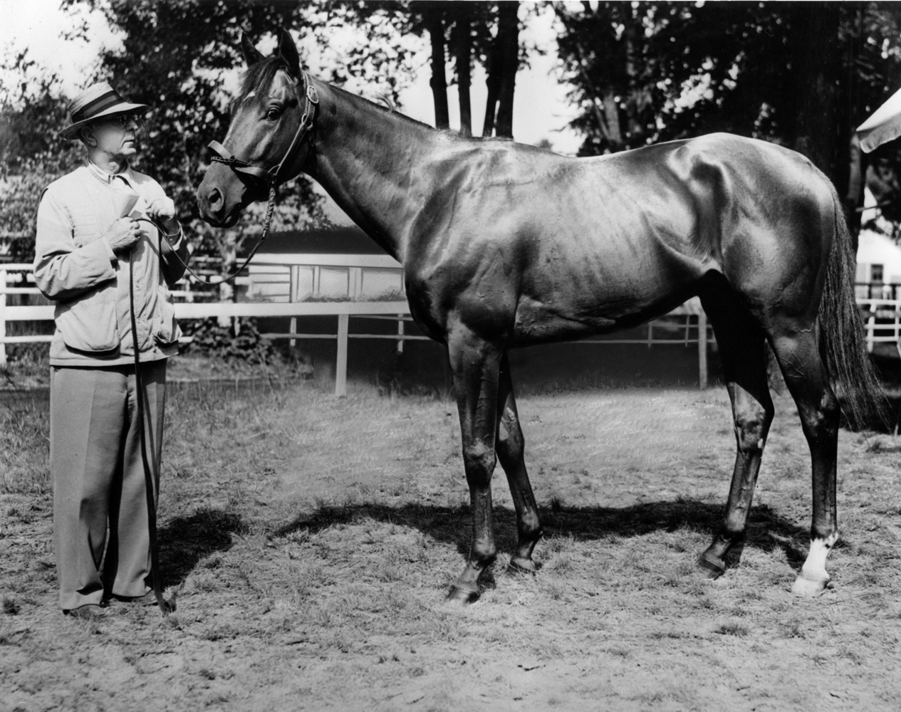 Max Hirsch and his Triple Crown winner, Assault (Keeneland Library Morgan Collection/Museum Collection)