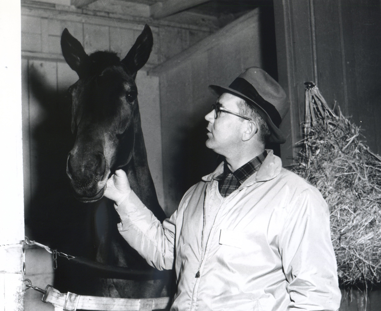 Eddie Neloy in the barns at Santa Anita (Vic Stein & Assoc./Bill Mochon Photo Collection /Museum Collection)