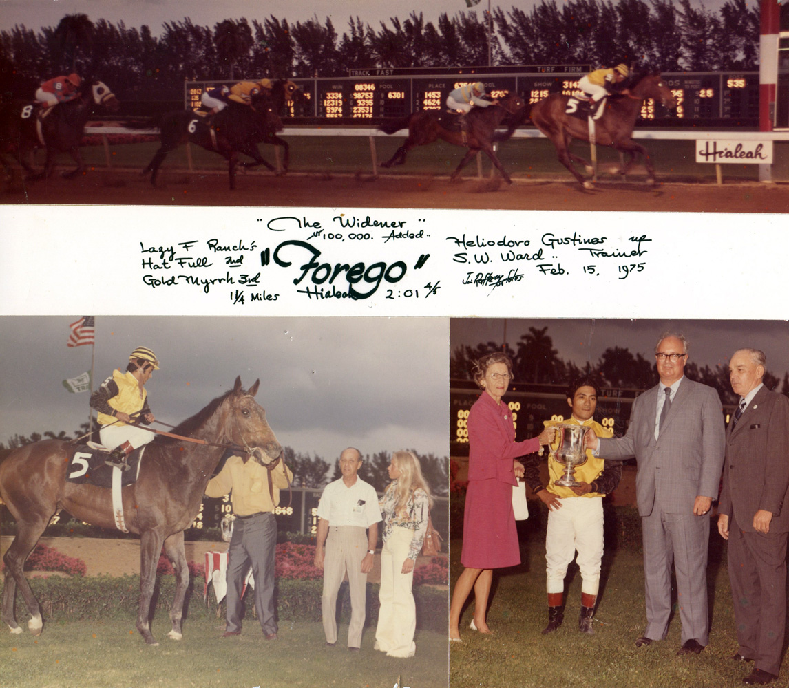 Win composite photograph for the 1975 Widener, won by Forego (H. Gustines up), trained by Sherrill Ward (Jim Raftery Turfotos/Museum Collection)